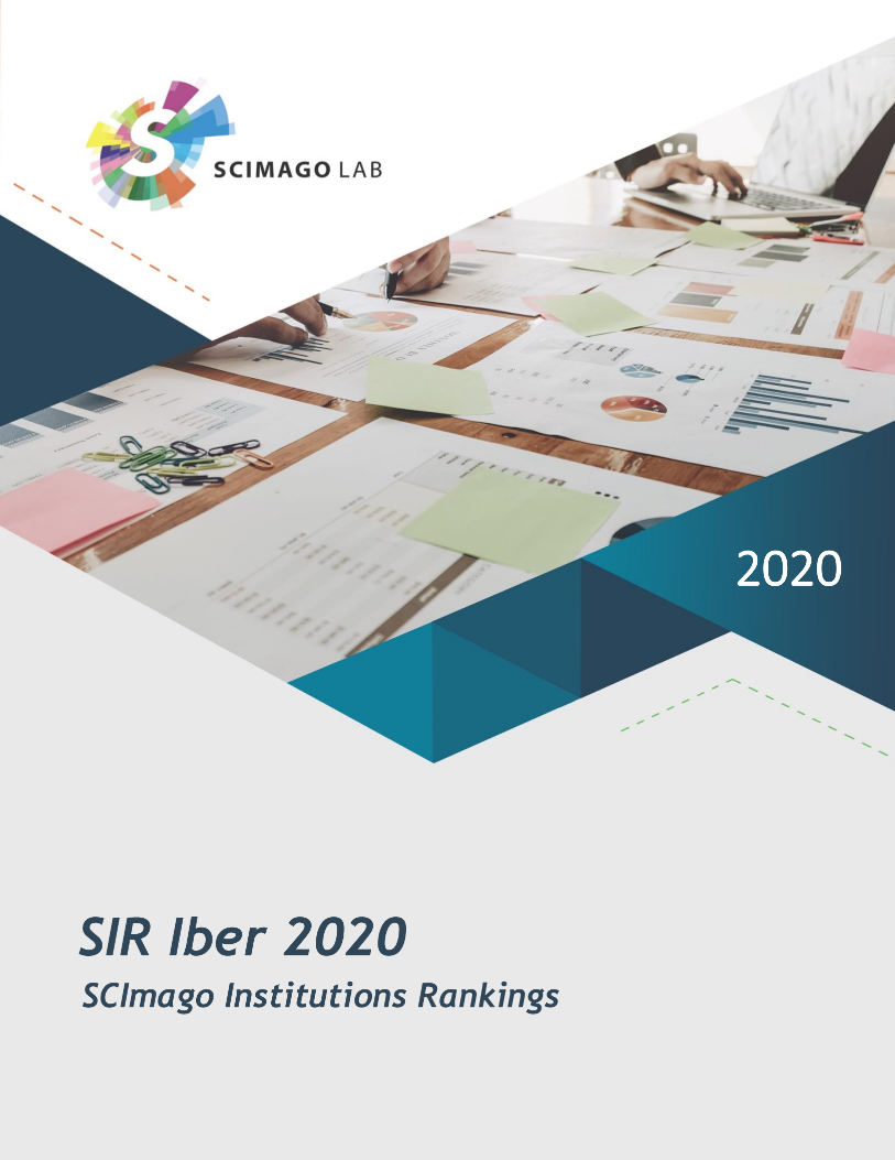 SIR IBER Report 2020 PDF